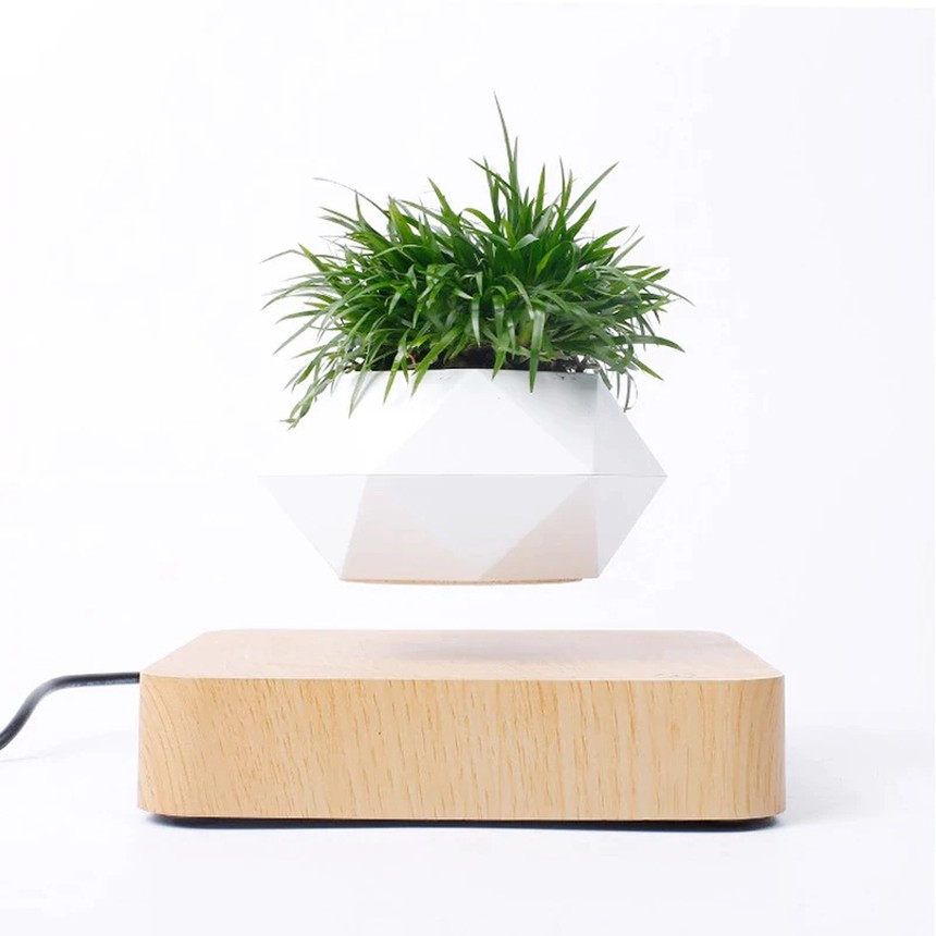 Magnetically Levitating Air Plant